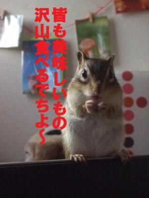044_convert_20091101080153.jpg