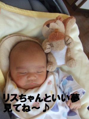 26_convert_20091024080547.jpg