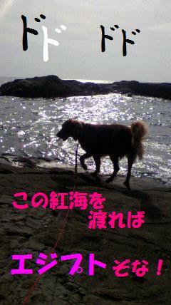 2009092814430002iwaba.jpg