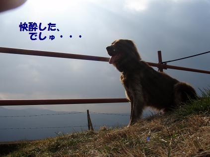 YOSHIFURU05FEB09 049