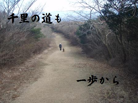 Senri19-20DEC09 DARUMA 199