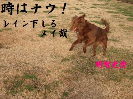 TOKI24DEC09 038