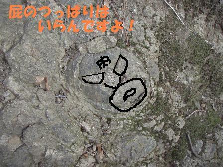 コピー (2) ~ 07JAN09 KANEGATAKE 029