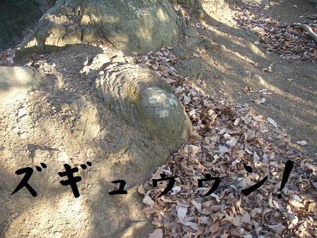 コピー ~ 07JAN09 KANEGATAKE 058
