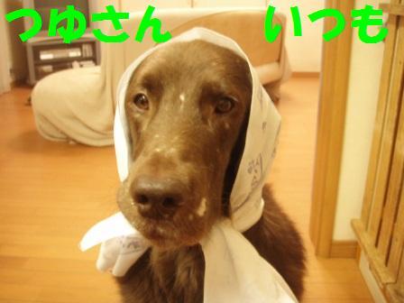 17JAN10 OYAMA 004