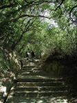左:護王神社へ向かう階段