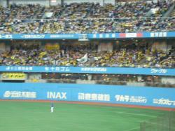ほとんど阪神ファン