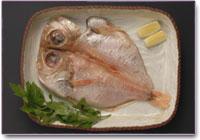v_fish.jpg