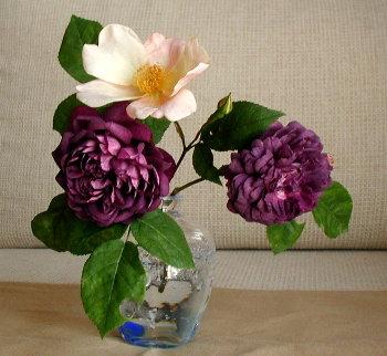 一体何枚の花びらが
