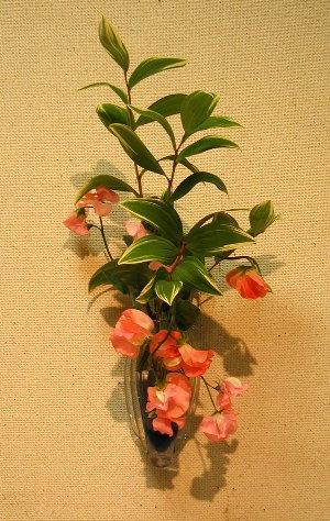 これは展示室前に咲いていたスイトピー