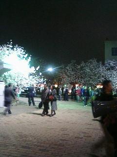20060412190507.jpg
