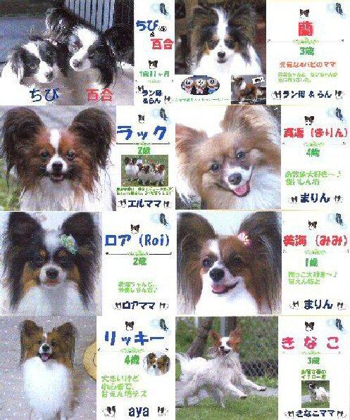 1 blog meibo2