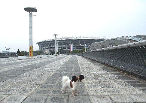 2009_10yokohama0016.jpg