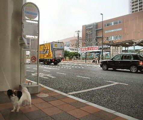 2009_10yokohama0041.jpg
