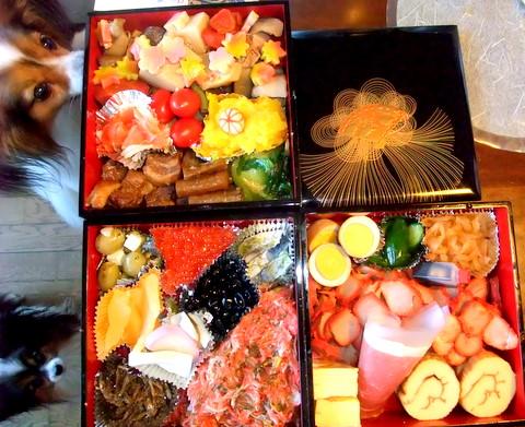 2010_0102syougatsu0004-1.jpg