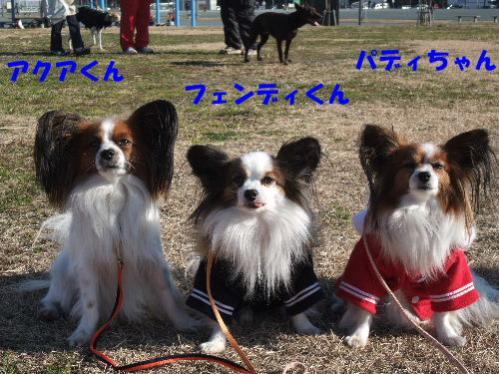 c0050220_12231673_riku.jpg