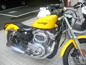 P1050940s.jpg