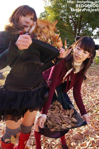 rukahiroyo8452.jpg