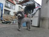2009-10-1youchien6.jpg
