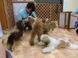 2009-10-2youchien12.jpg