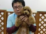 2009-10-2youchien18.jpg