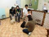 2009-9-27puppyparty5.jpg