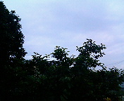 20060623044813