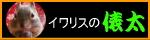 俵太サイト