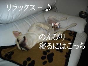 DSC01079.jpg