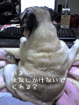 06-01-19_01-16.jpg