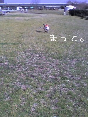 20060124023934.jpg