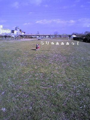 20060124024711.jpg