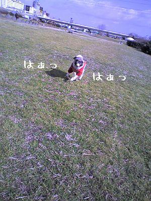 20060124024936.jpg