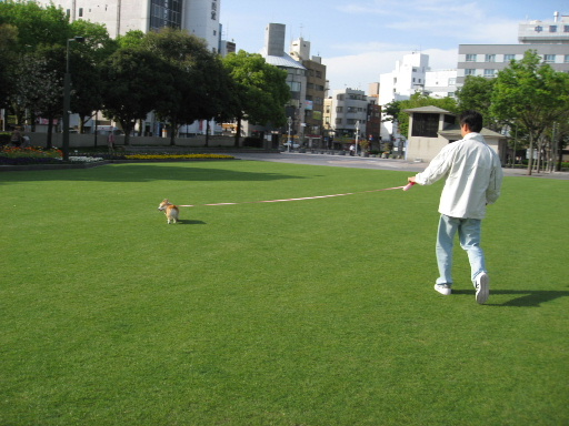 2008_0420(002).jpg