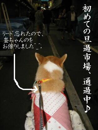 2008_0719(003).jpg