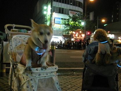 2008_0719(006).jpg