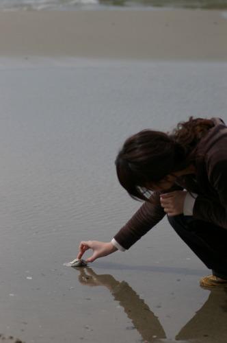砂浜だけど生きてる牡蠣 猟師さんの落し物?