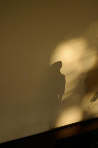 人影でなく 像の影です