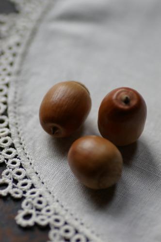 クヌギ ブナ科コナラ属