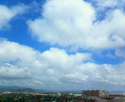 20060719b.jpg