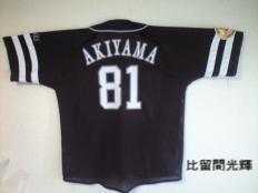 20081113akiyama81.jpg