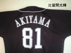 20081113akiyama8102.jpg