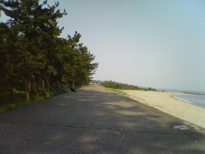 2007051002.jpg
