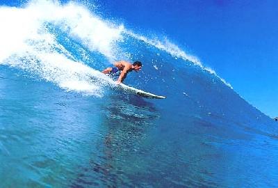 surfin4.jpg
