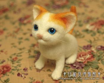 cat03b.jpg