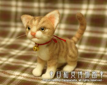 cat04_b.jpg