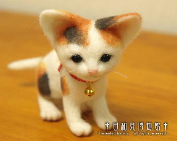 cat05b_b.jpg