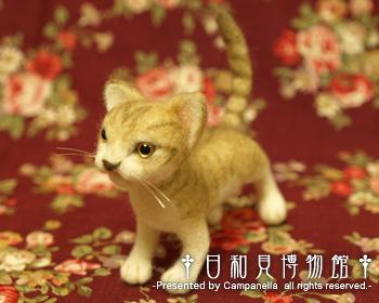 cat06b.jpg