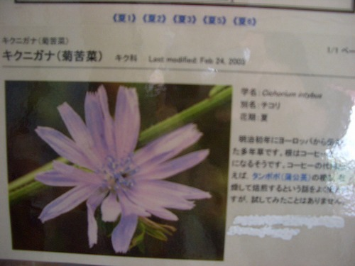 CIMG3459.jpg