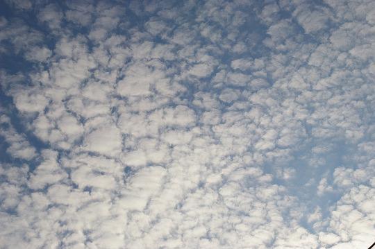 12/23今日の雲